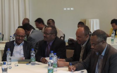 MFIs capacity building investments