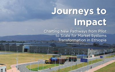 Journeys to Impact: Charting New Pathways from Pilot to Scale for Market Systems Transformation in Ethiopia