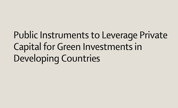 Public Instruments to Leverage Private Capital for Green Investments in Developing Countries