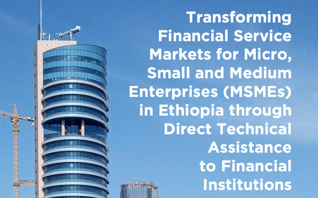 Transforming Financial Service Markets for Micro, Small and Medium Enterprises (MSMEs) in Ethiopia through Direct Technical Assistance to FinancialInstitutionsThe Case of Enterprise Partners