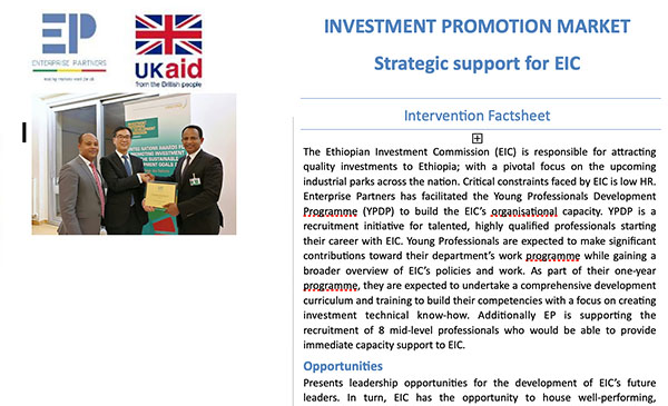 Strategic Support for EIC